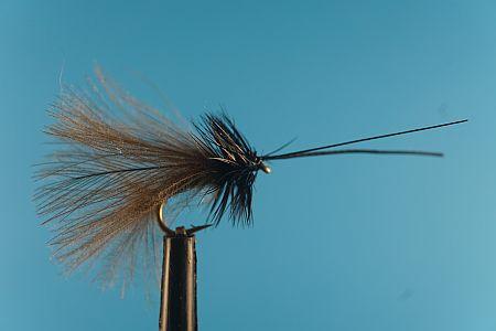 CDC Black Sedge 1000vliegen
