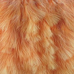Chickabou Patch Sunburst 1000vliegen.nl