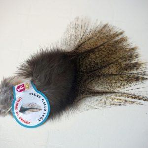A kwaliteit-Chevron hackles-Coq de Leon Medium-Pardo-zadel-hoendersoort-spanje-leon-fibers-tails-wings-sedges-gespikkeld-nekharen-vliegbinden-venlo