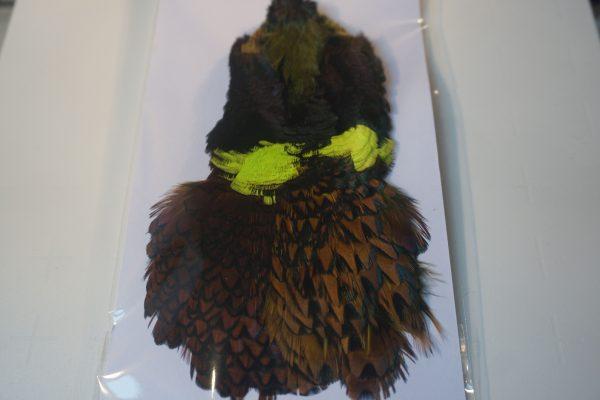 cock-pheasant-cape-chartreuse-natte vliegen-nymphen-vliegbinden-chevron hackles-venlo