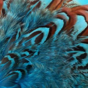 cock-pheasant-shoulder-patch-kingfisher blue-chevron-natte vliegen-vliegbinden-venlo