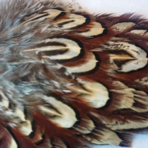 cock-pheasant-shoulder-patch-natural-chevron-natte-vliegen-vliegbinden-venlo