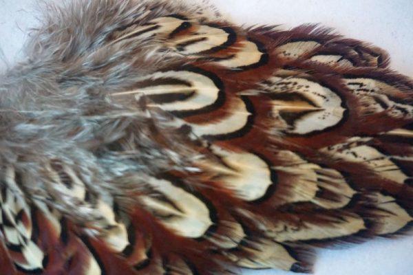 cock-pheasant-shoulder-patch-natural-chevron-natte-vliegen-vliegbinden-venlo