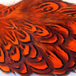 cock-pheasant-shoulder-patch-hot orange-chevron-natte vliegen-vliegbinden-venlo