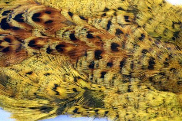 pheasant-neck-hen-cape-fluo yellow-chevron-vliegbinden-venlo/natte vliegen/nymphen