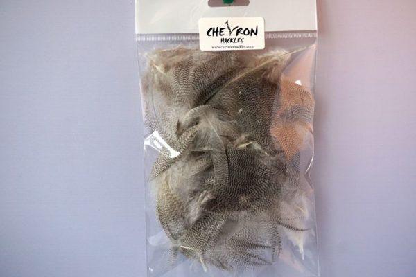 mallard-flankveren-natte vliegen-droge vliegen-vliegbinden-wilde eend-Chevron-grey-venlo