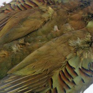 patrijs-french partridge-streamers-marabou-skin-olive-meivliegen-hackles-vliegbinden-venlo