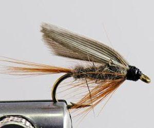1000vliegen-nl-vliegen-starters-set-32-stuks-box-beginner-vliegvisser-32-vliegen-streamer-klein-rien-special-jack-frost-natte-vliegen-wickham-fancy-nymph-hares-ear-bh-droge-vliegen-cdc-klinkhamer-vl-2