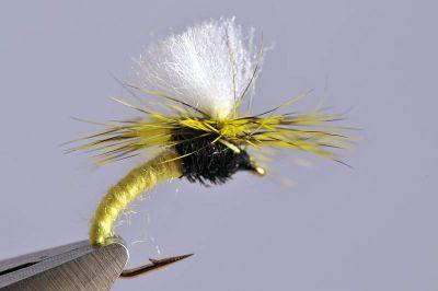 droge-vliegen-set-18-stuks-klinkhamer-iron-blue-dun-red-tag-walkers-sedge-forel-witvis-voorn-vliegvissen-vliegvisser-vijvers-rivier-venlo-vliegendoos-box