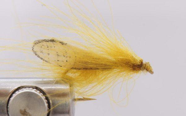1000vliegen-nl-cdc-cdc-caddis-realistic-dodelijke-vlieg-realistisch-caddsi-forel-rivier-vliegvissen-vliegvisser-droge-vlieg-venlo