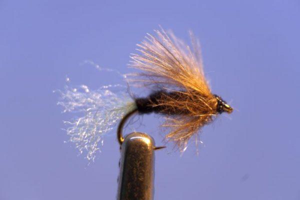 1000vliegen.nl-cdc- CDC hackle caddis-caddis-vliegvissen-droge vlieg-forel-rivier-vliegvisser- venlo