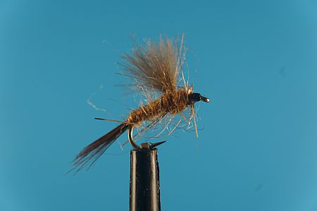 CDC Natural 1000vliegen