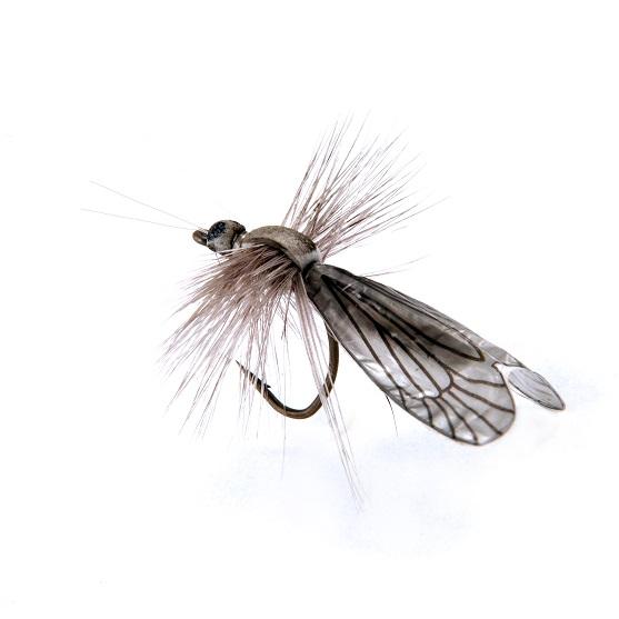 1000vliegen.nl-Caddisfly Adult Color Light Grey-realistic flies- realistische vlieg-caddis- licht grijs-forel-vliegvissen-tenkara-rivier-natuurgetrouw-vliegvisser-venlo