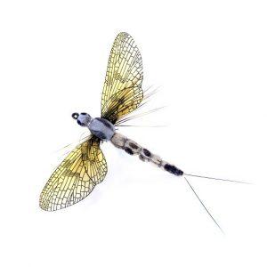 1000vliegen.nl-realistische vlieg-may fly-Mayfly Spent Beige / Light Grey-forel-vliegvissen-tenkara-rivier-natuurgetrouw—realistic fly-meivlieg-vliegvisser-venlo