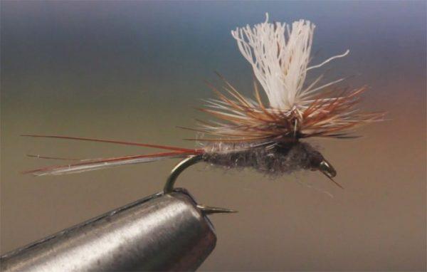 1000vliegen.nl-droge vlieg-adams parachute-forel-dry fly-vliegvissen-rivier-vliegvisser-drijvend--venlo