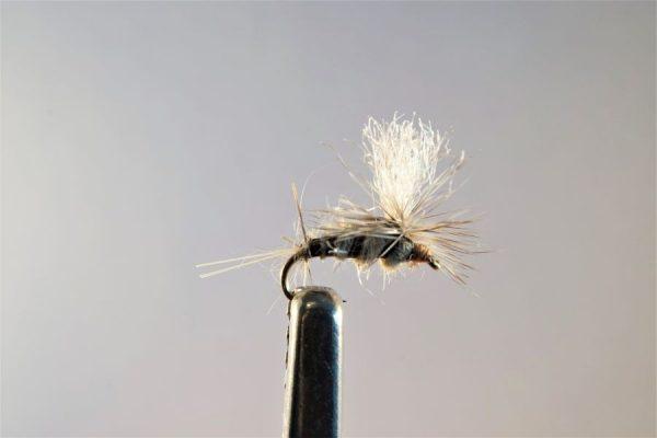 1000vliegen.nl, drijvend, Droge vliegen speciaal, forel, rivier, Beatis Krystel,, venlo, vijver, vlagzalm, vliegvissen, vliegvisser, wf lijn