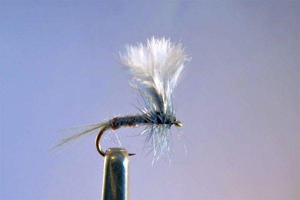 1000vliegen.nl, drijvend, droge vliegen, Becks Dun, meivlieg,,forel, venlo, vijver, river, vliegvissen, vliegvisser, vlagzalm, wf lijn