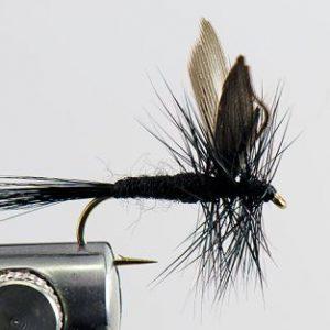 1000vliegen-nl-drijvend-droge-vliegen-speciaal-black-gnat-forel-venlo-vijver-river-vliegvissen-vliegvisser-vlagzalm-wf-lijn