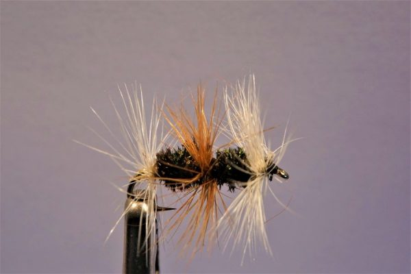 1000vliegen.nl-droge vlieg-double renegade – attractor- wild water-zichtbaar-vlagzalm-forel-dry fly-vliegvissen-rivier-vliegvisser-drijvend--venlo