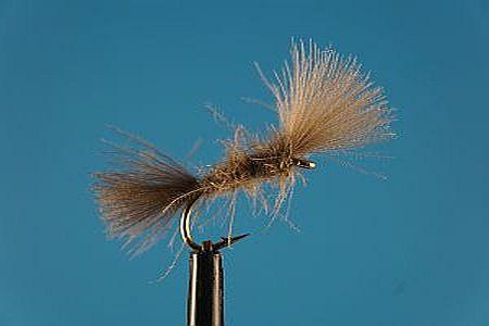Shipman Buzzer S 1000vliegen