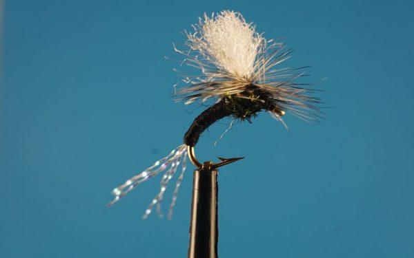 Klinkh Black L 1000vliegen