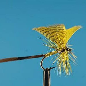 Mayfly Yellow S 1000vliegen