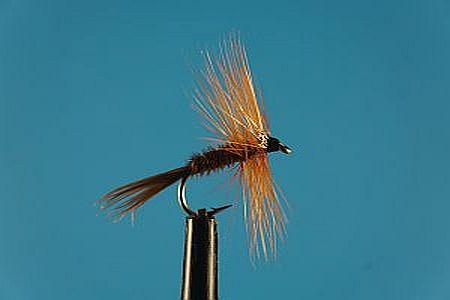 Pheasant Tail S 1000vliegen