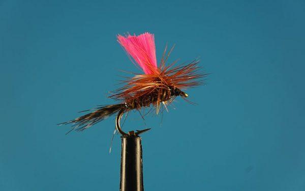 Pinky Para L 1000vliegen