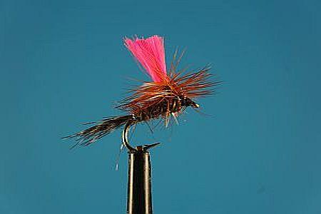 Pinky Para S 1000vliegen