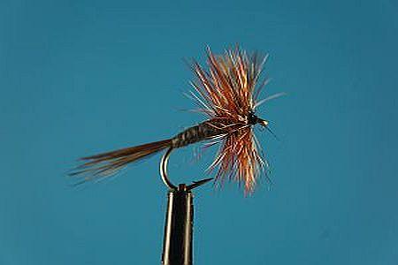 Adams S 1000vliegen
