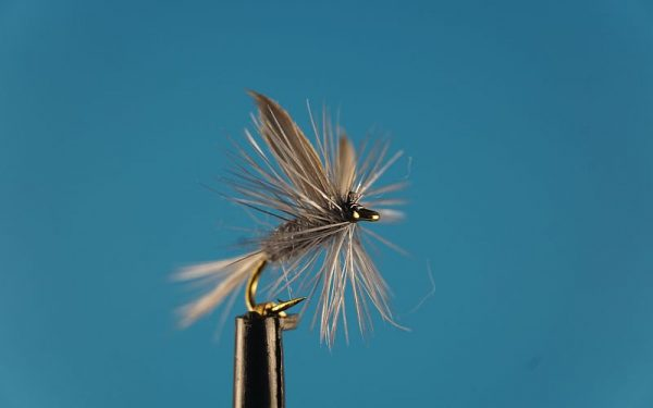 Blue Dun L 1000vliegen