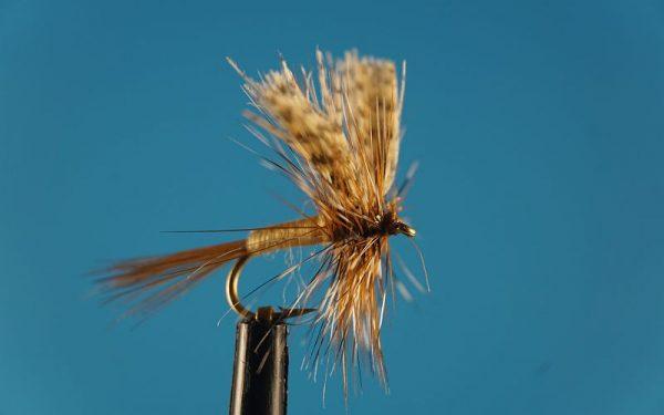 March Brown L 1000vliegen