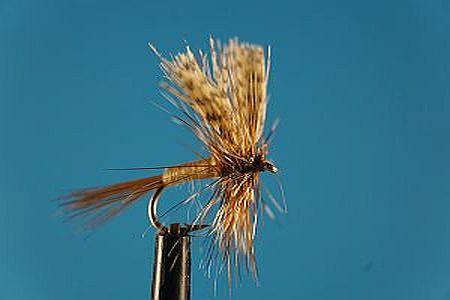 March Brown S 1000vliegen