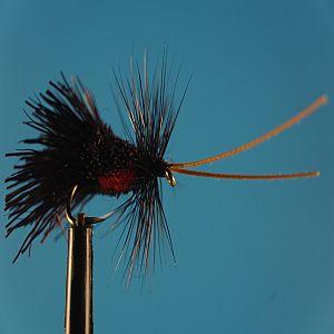 Goddard Sedge Black S 1000vliegen