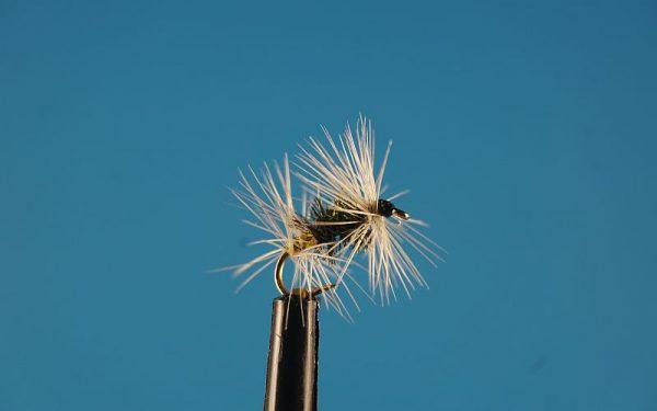 Dpuble Badger L 1000vliegen