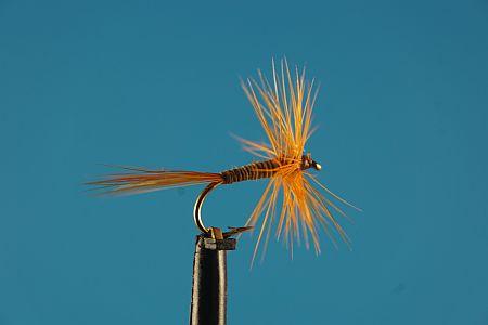 Red Spinner S 1000vliegen