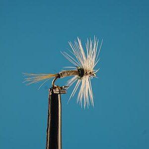 Caenis S 1000vliegen
