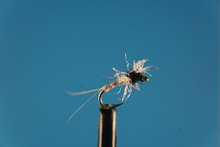 Caenis Spinner S 1000vliegen