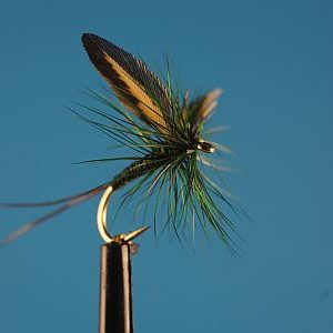 Glomma Dun S 1000vliegen