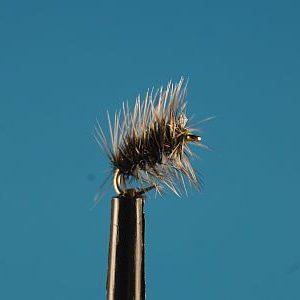 Griffith Gnat S 1000vliegen