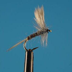 Becks Dun S 1000vliegen