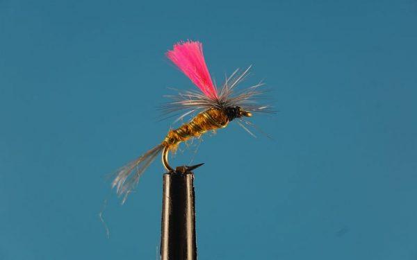 Indicator Parachute Beatis L 1000vliegen