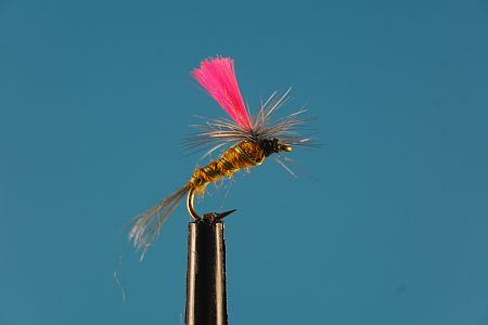 Indicator Parachute Beatis S 1000vliegen