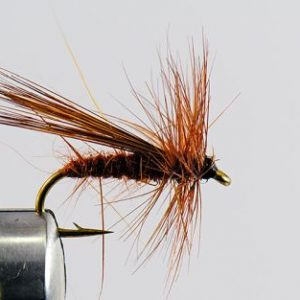 1000vliegen-nl-drijvend-droge-vliegen-speciaal-fluttering-caddis-forel-venlo-vijver-river-vliegvissen-vliegvisser-vlagzalm-wf-lijn