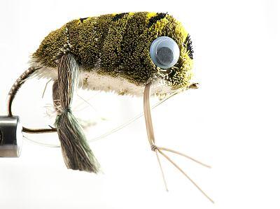 1000vliegen.nl, baars, polder ,weedguard, frog wiggle legs, kikker, roofvissen, , reservoir, rivier, roofvis, snoek, snoekbaars, venlo, vijver, vliegvissen, vliegvisser, wf lijn