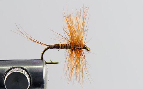 1000vliegen.nl, drijvend, droge vliegen speciaal, red spinner, ondiep water,forel, venlo, vijver, river, vliegvissen, vliegvisser, vlagzalm, wf lijn