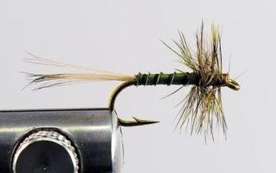 1000vliegen.nl, drijvend, droge vliegen, Spring Olive Spider, lente, lentevlieg, forel, venlo, vijver, river, vliegvissen, vliegvisser, vlagzalm, wf lijn