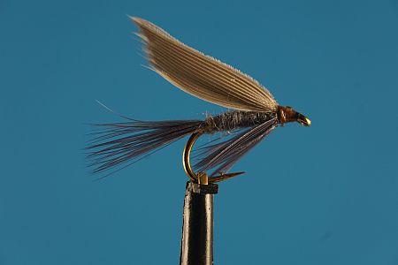 Blue Dun 1000vliegen