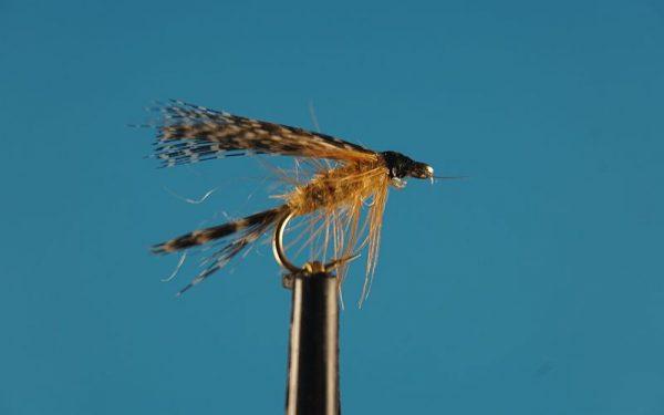 Catskill 1000vliegen