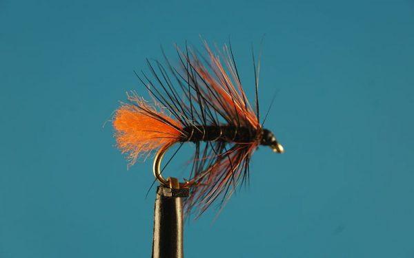 Black & Orange 1000vliegen